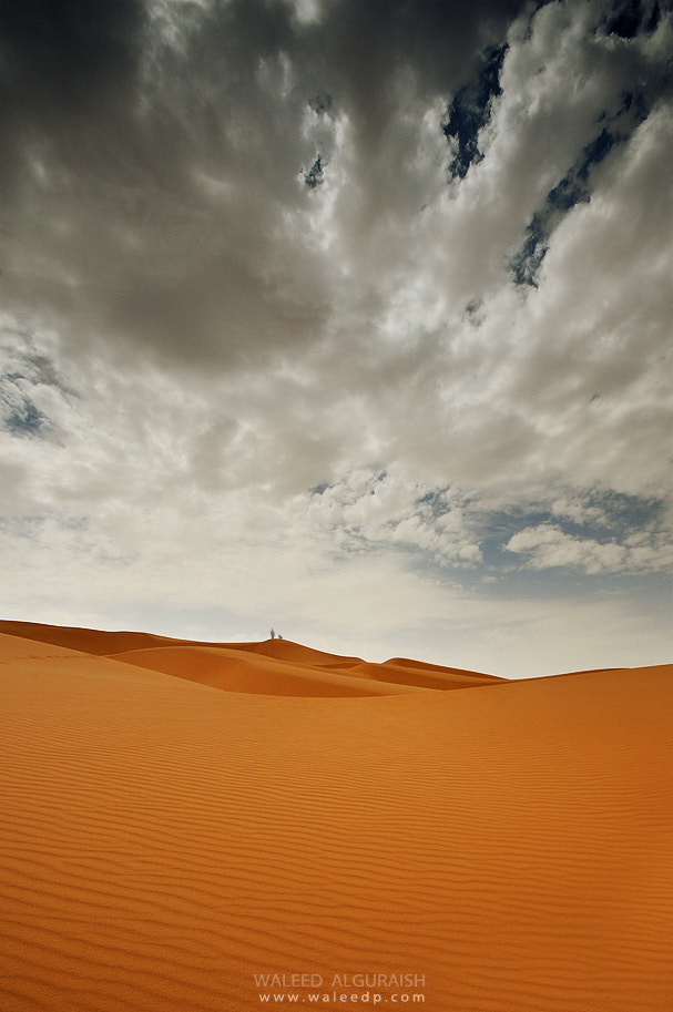 Photograph Gold by Waleed  Aljuraish on 500px