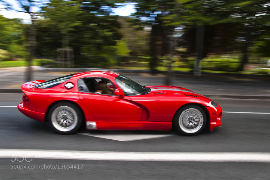 Photograph Viper by MIGUEL BECERRA  on 500px