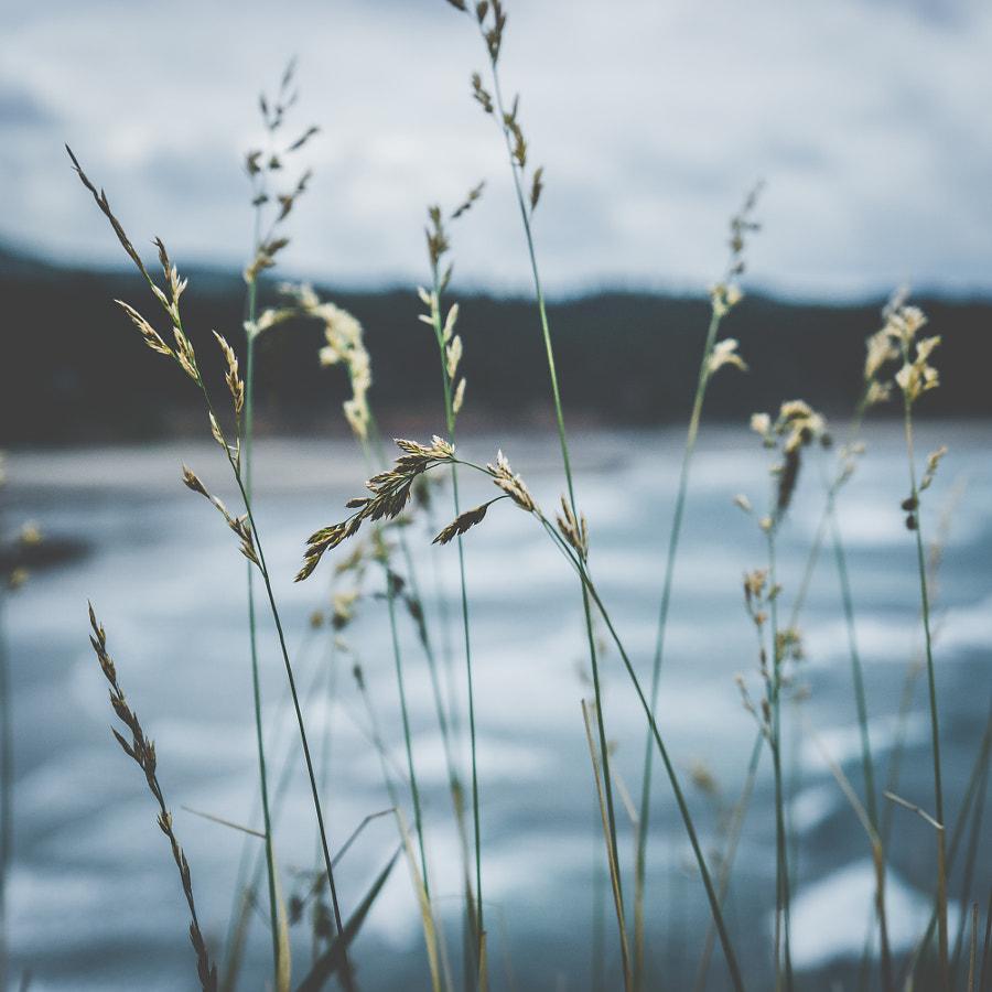 _feel the breeze
