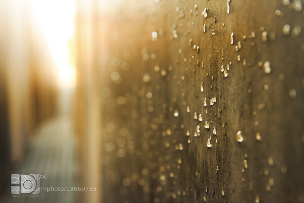 Photograph Rain by Daniel Hofmann on 500px