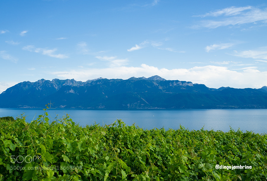 Lago Leman desde las alturas by Diego Jambrina (Elhombredemackintosh) on 500px.com