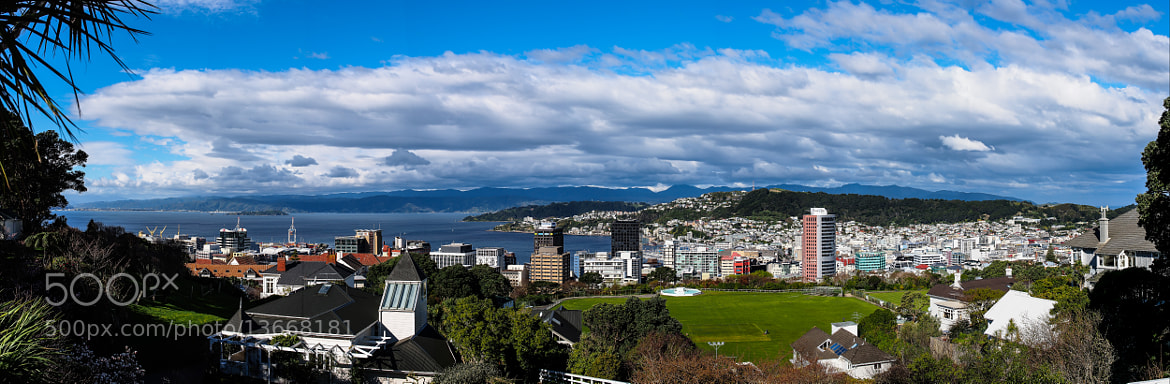 Photograph Wellington Panorama  by PaulEmmingsPhotography  on 500px