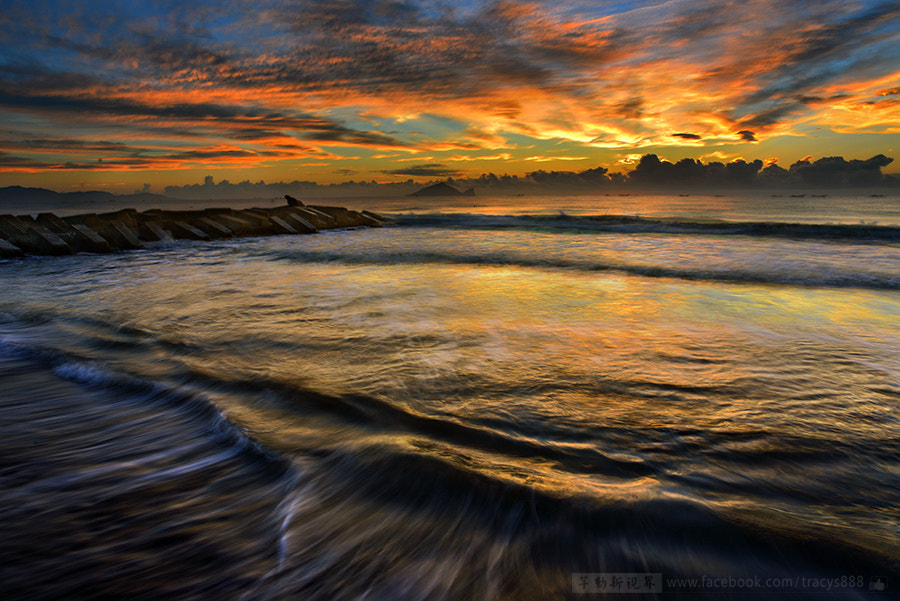 Photograph Golden Sea before Sun rise by 芊芊 劉 on 500px