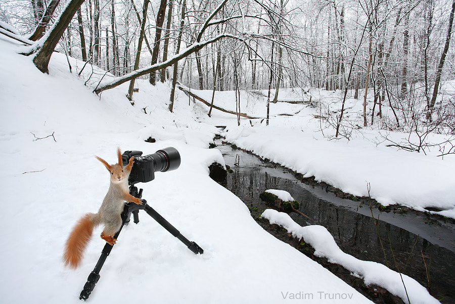 landscape photographer by Vadim Trunov on 500px.com