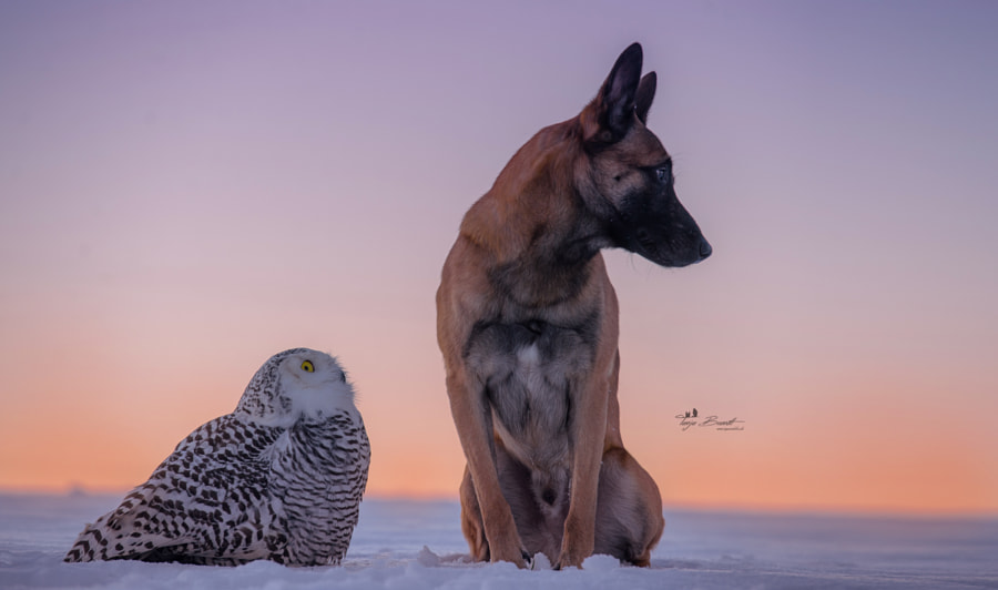 Talk about by Tanja Brandt on 500px.com