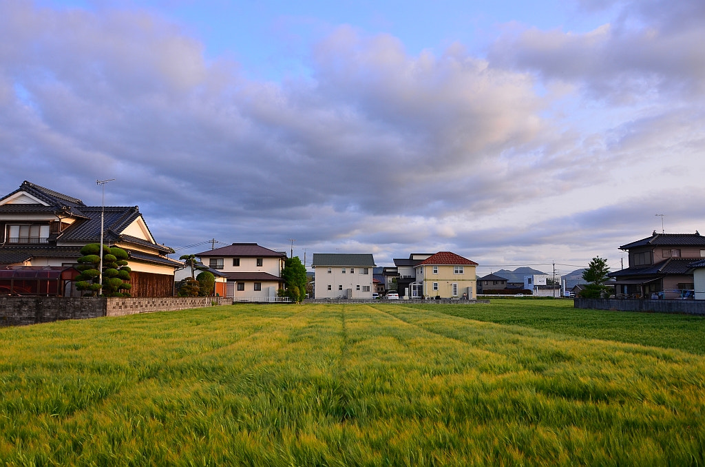 Photograph Japanese Field by Abandoned Kansai on 500px