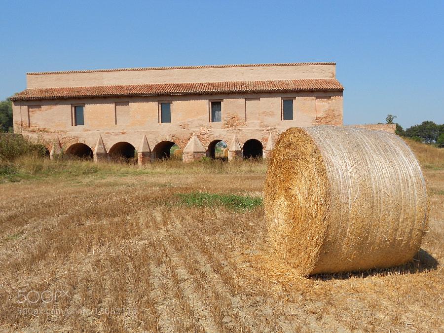 chiavica dell'agrifoglio XVII, Codigoro by Fabrizio Pivari (pivari) on 500px.com