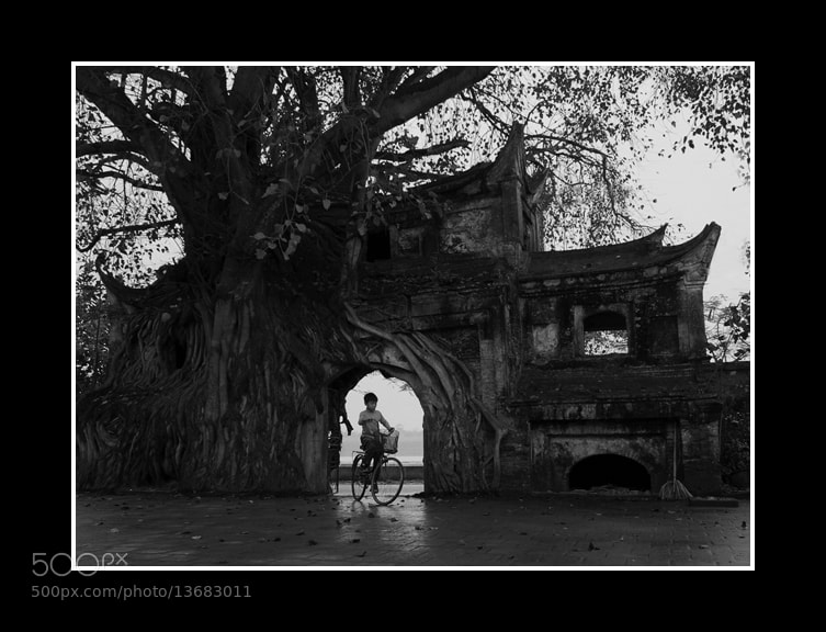 Photograph Untitled by Tuan Nguyen Quang on 500px