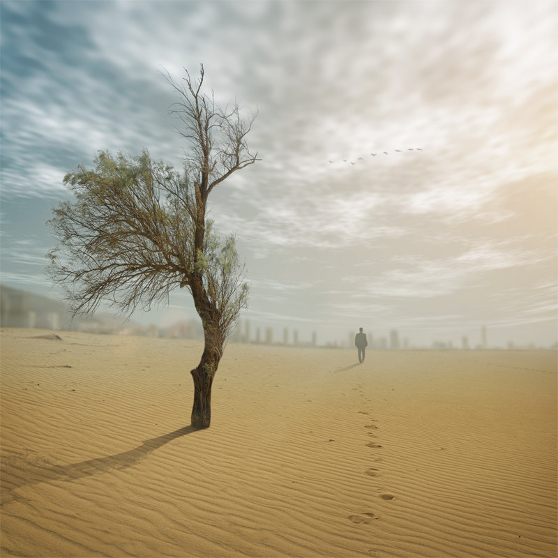 Photograph Finder by Hossein Zare on 500px