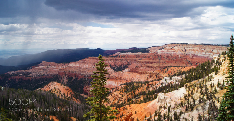 Photograph Cedar Breaks III by Erik Anderson on 500px