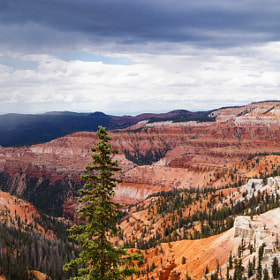Cedar Breaks III by Erik Anderson (bearseyephoto)) on 500px.com