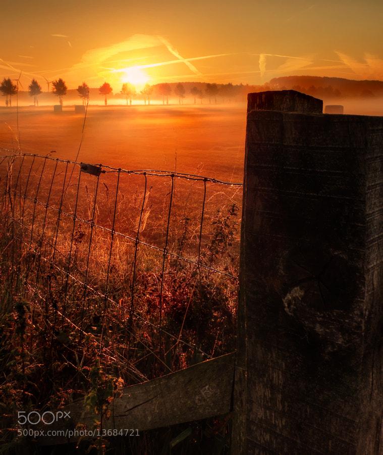 Photograph misty morning by Patrick Strik on 500px