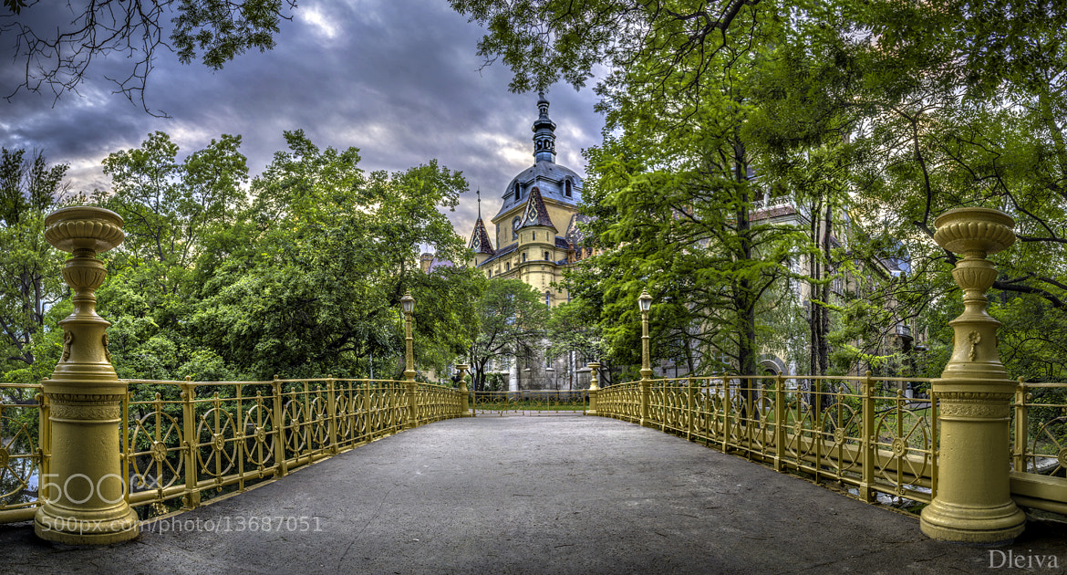 Photograph Vajdahunyad Castle, Varosliget, Pest, Budapest, Hungary by Domingo Leiva on 500px