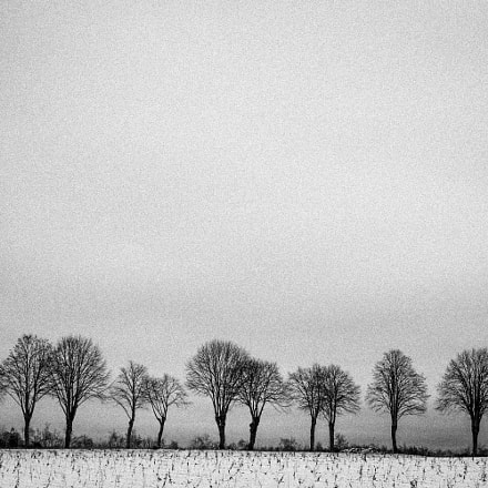 Wintertime #4