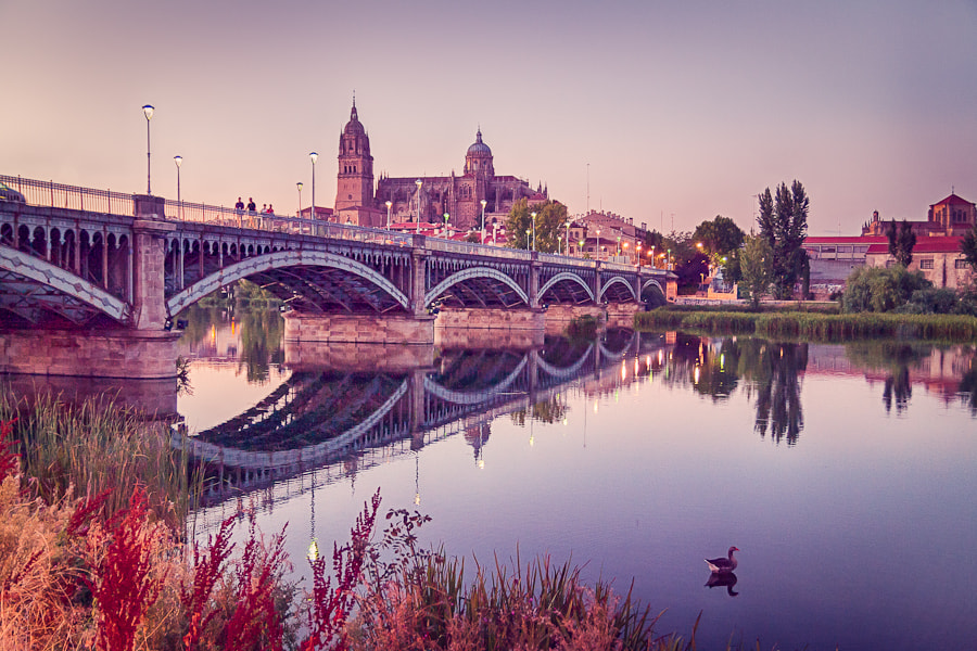 Photograph Sunset in Salamanca by Jose Agudo on 500px