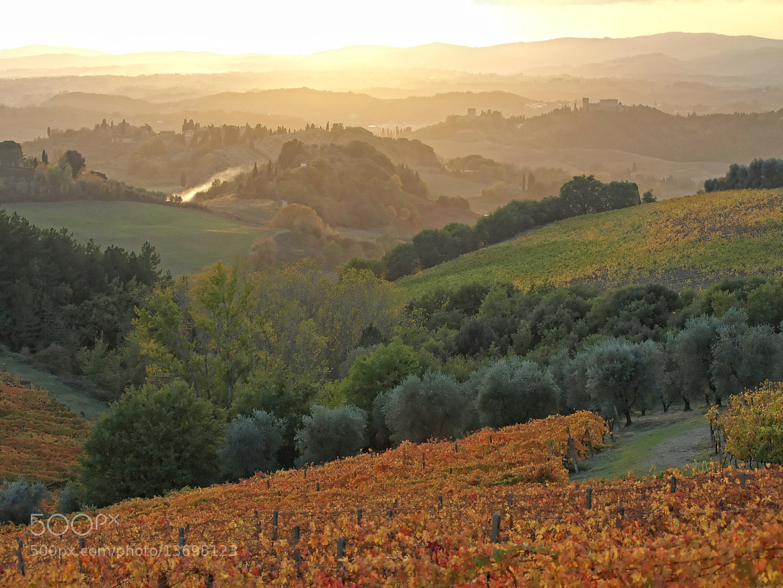 Photograph Tramonto nel Chianti by Michele Alderighi on 500px