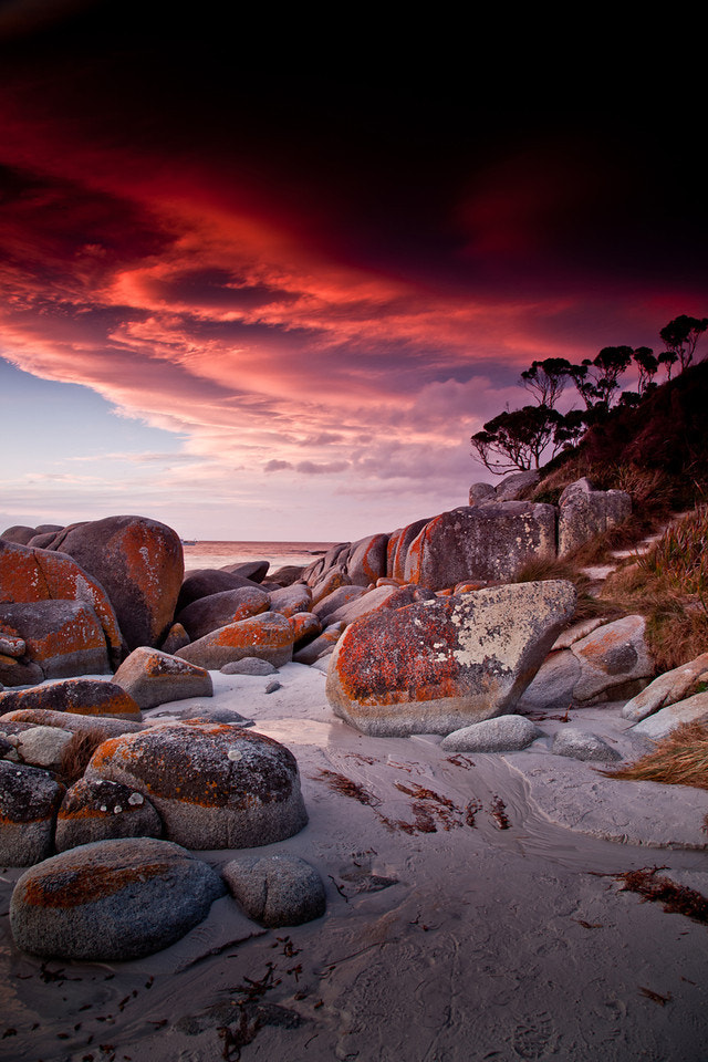Photograph Tasmania - Bay of Fires by Tim Starkey on 500px