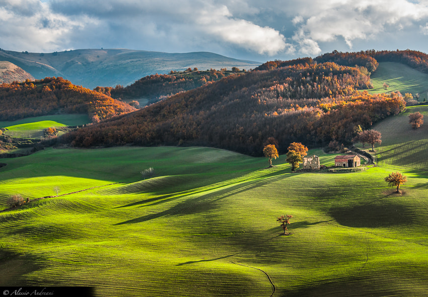 Photograph Sweet Hills by Alessio Andreani on 500px