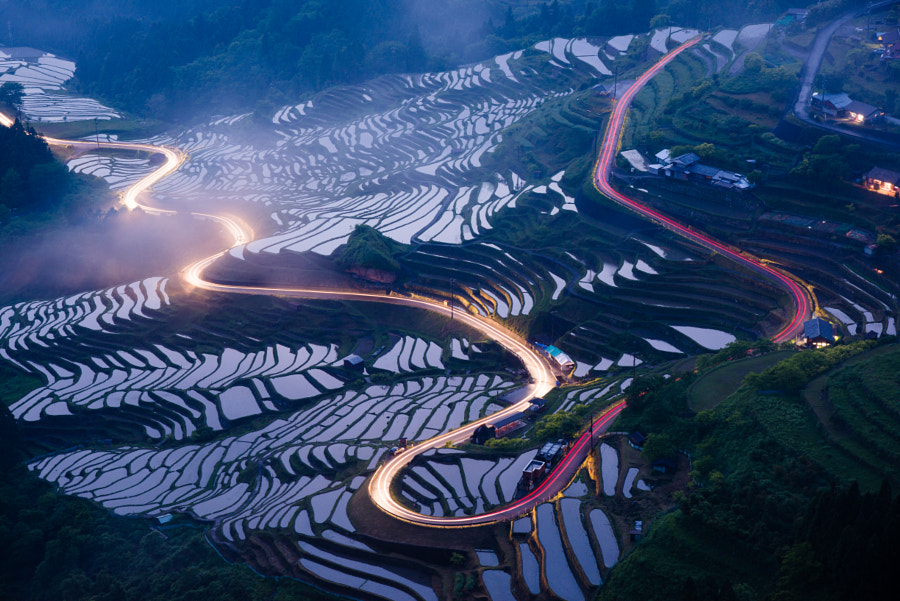 Lines in a terraced rice fields by Soichiro Sakatani on 500px.com