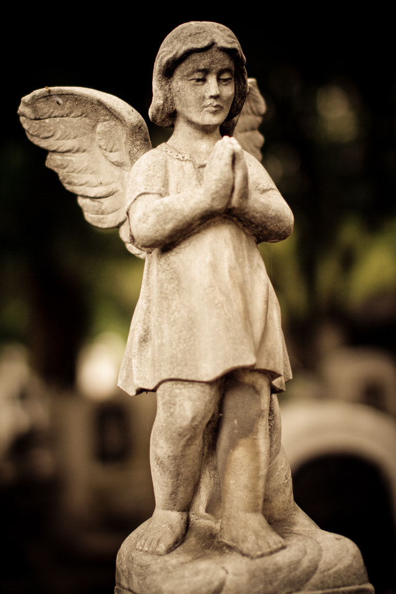 Photograph Send me an angel by Abif Muñoz on 500px