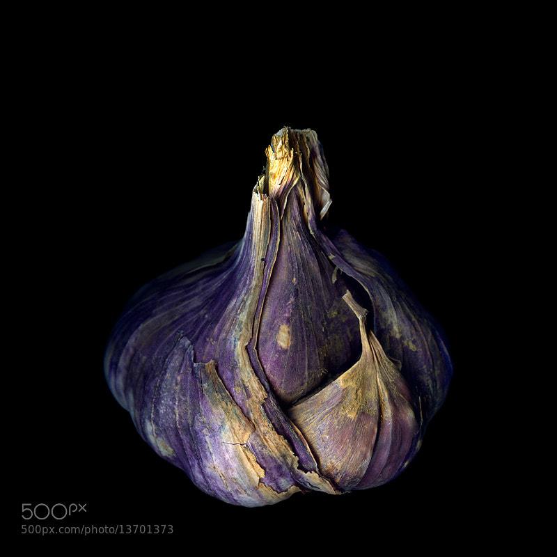 Photograph YORKSHIRE GARLIC... by Magda Indigo on 500px