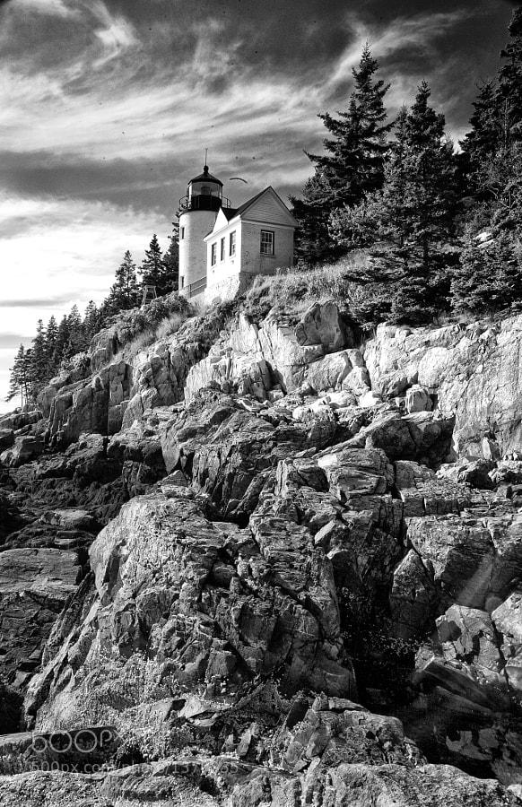 Near Acadia National Park