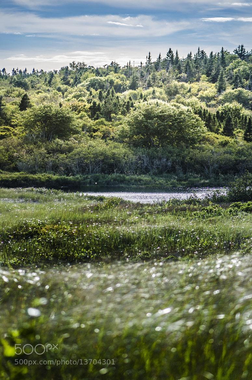 Photograph Nova Scotia by Leo  on 500px