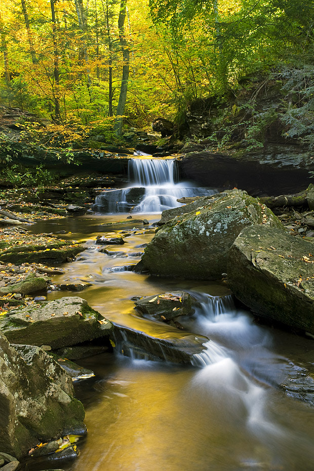 Photograph Harrison Wright Golden Falls by Jeanine Leech on 500px