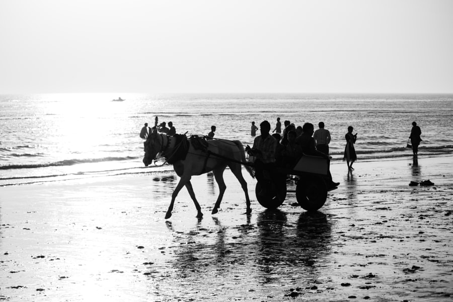 Beach Silhoutte by Vivek Pandey on 500px.com