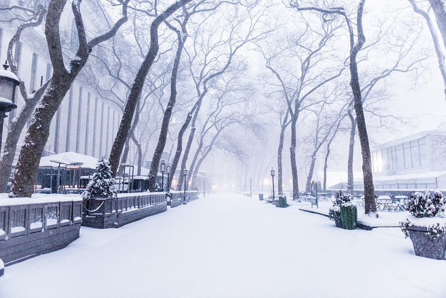 Bryant Park by Grant Friedman on 500px.com