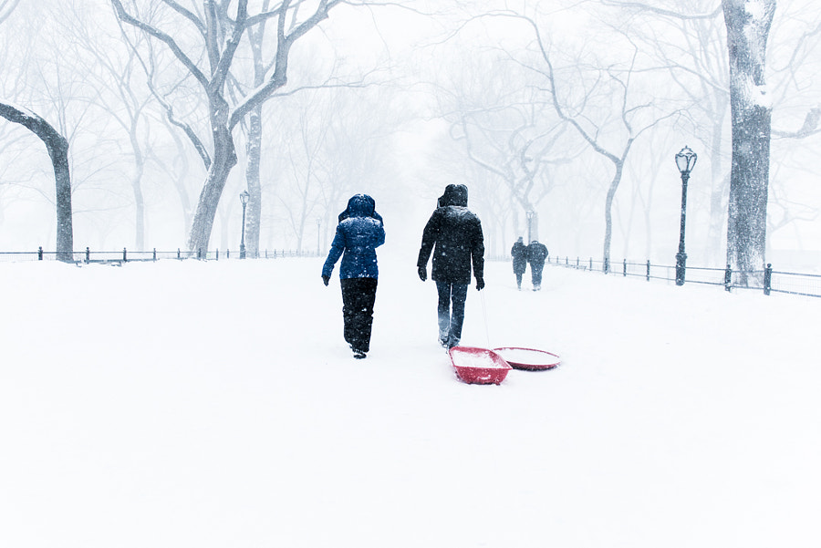 Sleds Are The Only Way to Travel by Grant Friedman on 500px.com