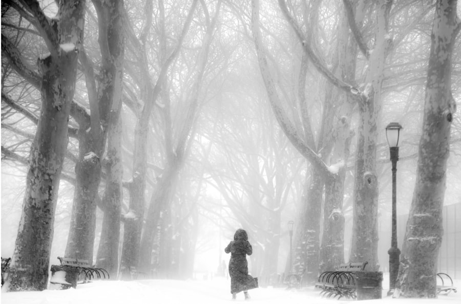 Blizzard of 2016 NYC by Justin Bereman on 500px.com