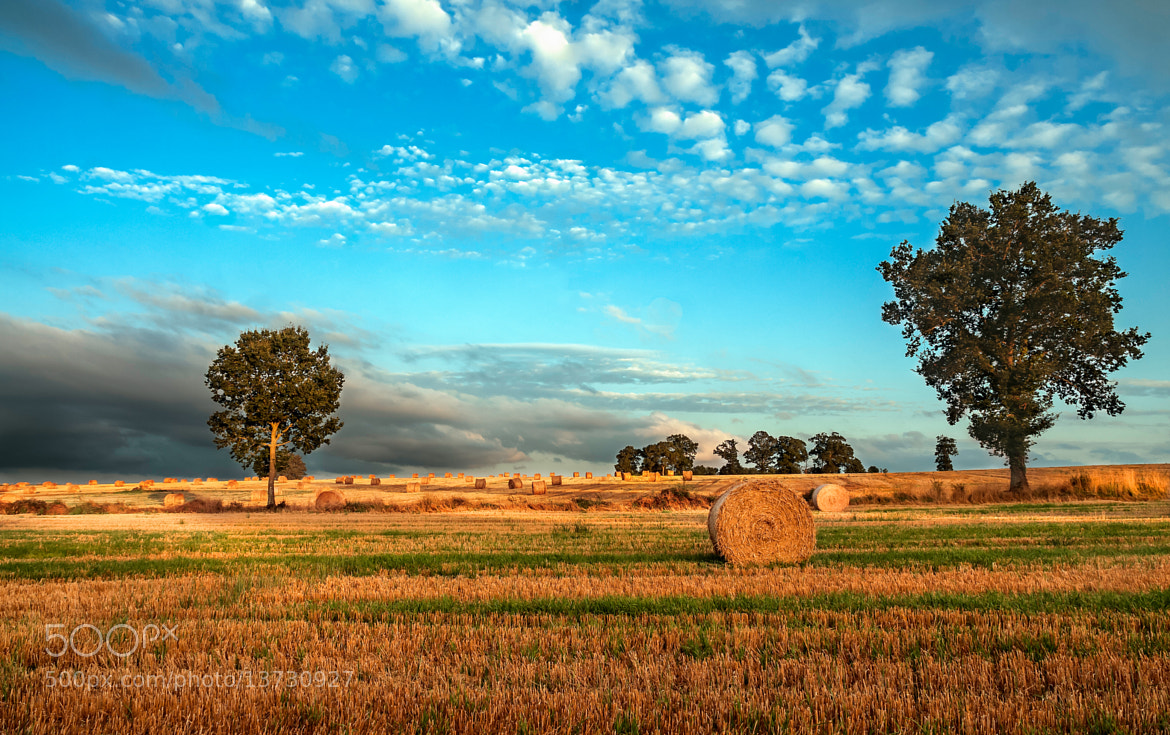 Photograph countryside by Riccardo Colelli on 500px