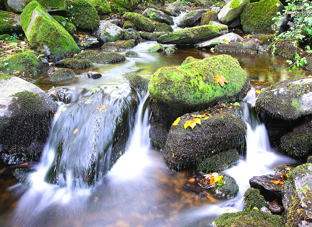 Photograph Dartmoor stream by Kevin  Keatley on 500px