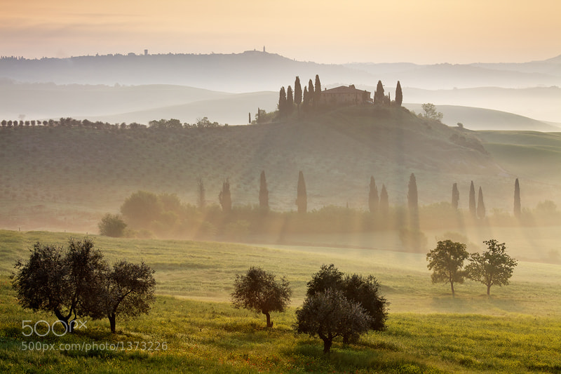 Photograph Morning Rays by Martin Rak on 500px