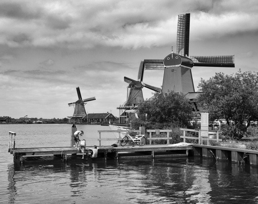 Windmills in Amsterdam