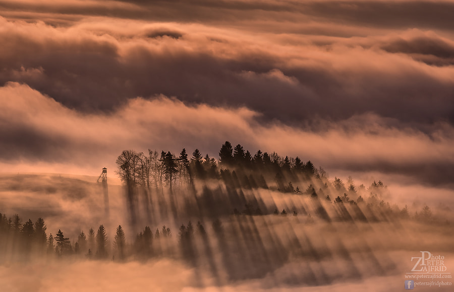 Shadows by Peter Zajfrid on 500px.com