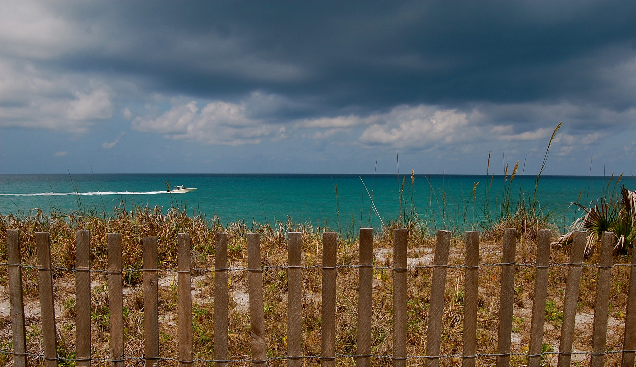 Photograph Florida Summer by Ed Pritchard on 500px