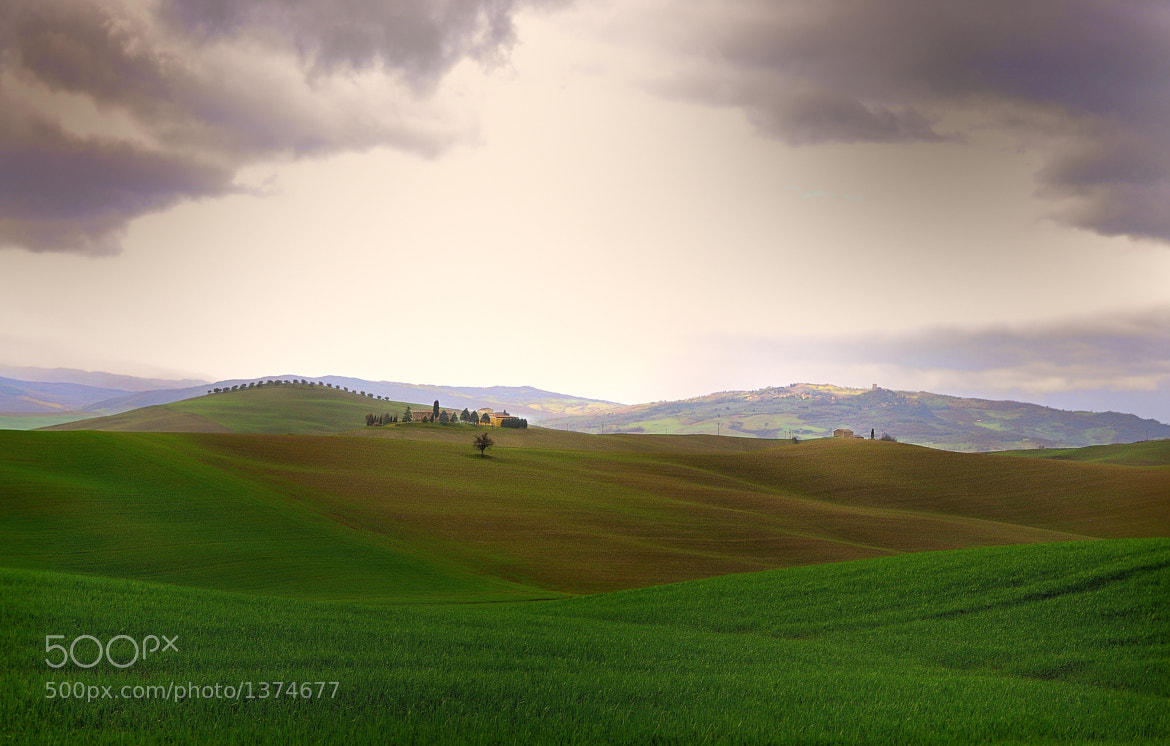 Photograph Tuscany by mauro maione on 500px