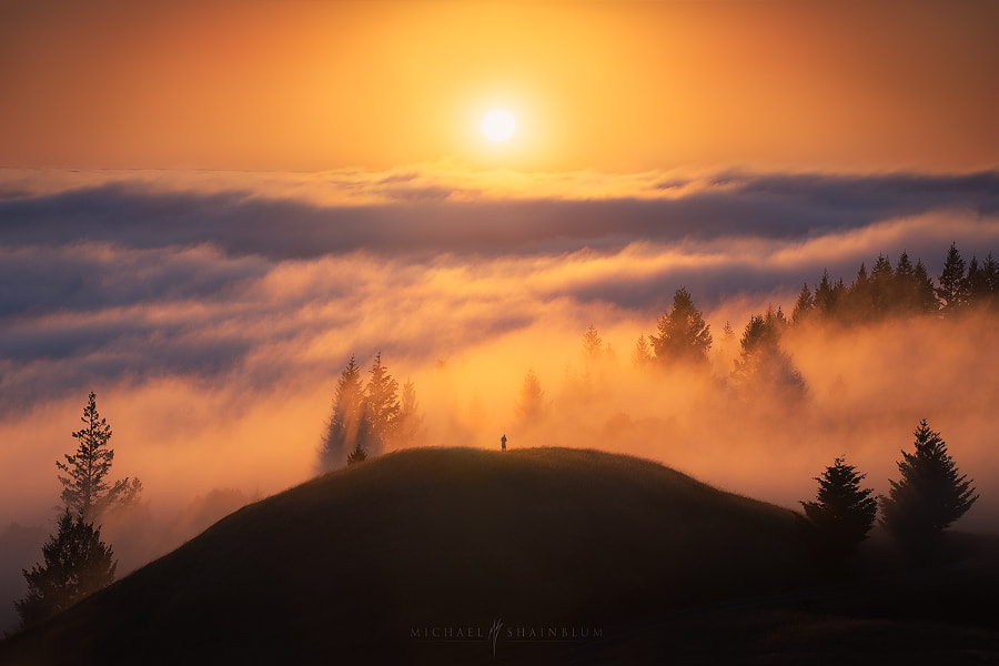 Triumph by Michael Shainblum on 500px.com