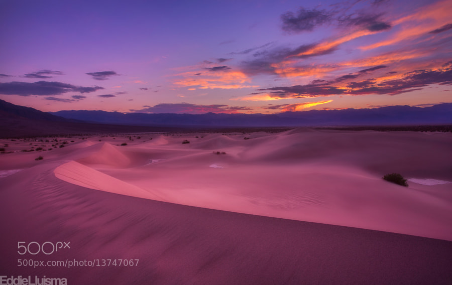 Photograph Mesquite Dunes by Eddie Lluisma on 500px
