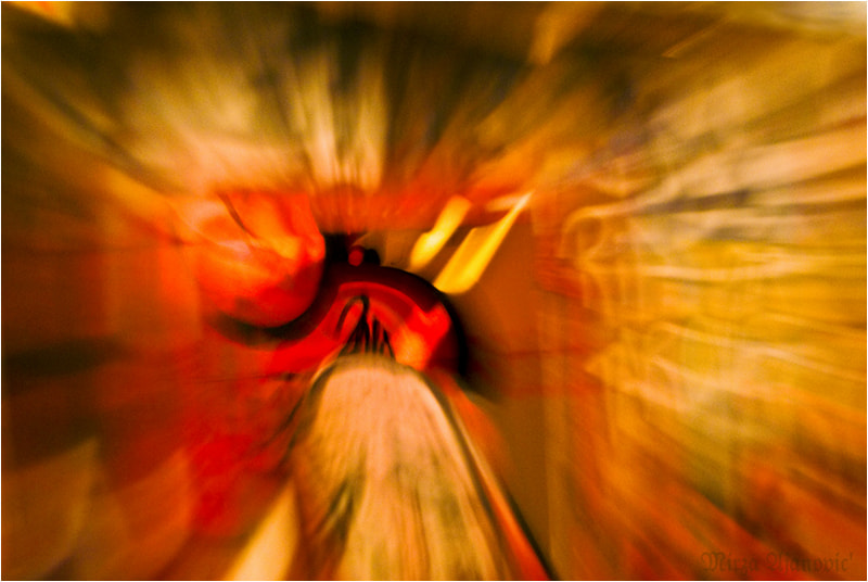 Photograph Painting Light in Motion run InTo by Mirza Ajanovic on 500px