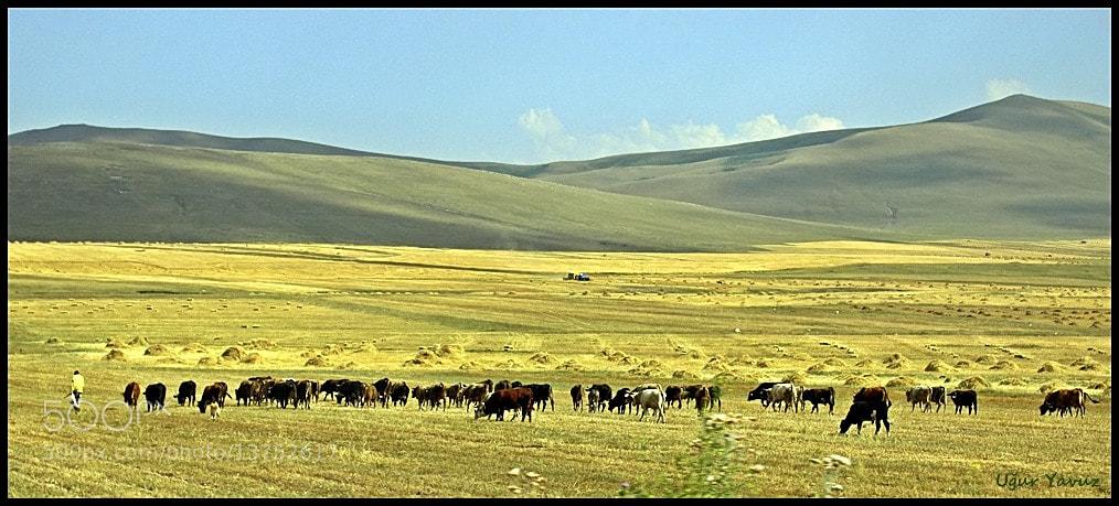 Photograph Plateau... by Ugur Yavuz on 500px