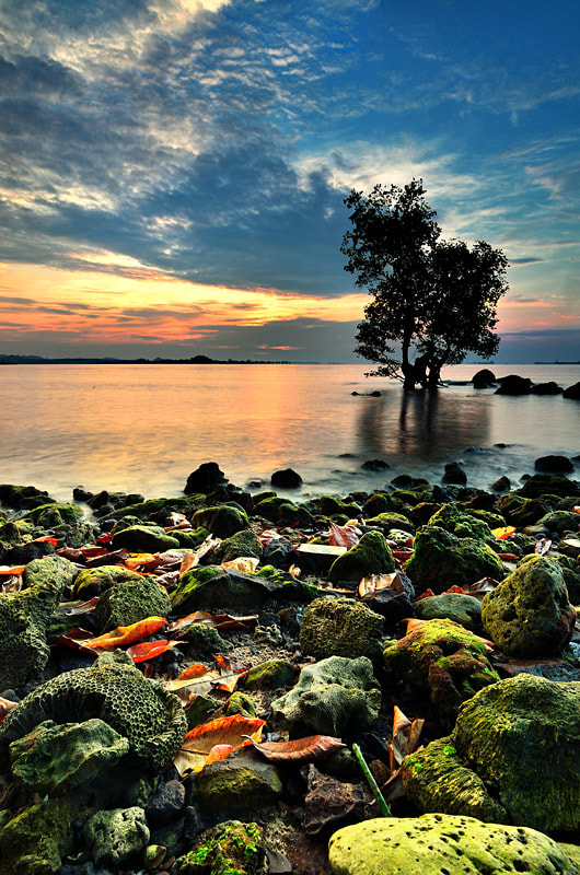 Photograph Summer Time  by Ade Rinaldi on 500px