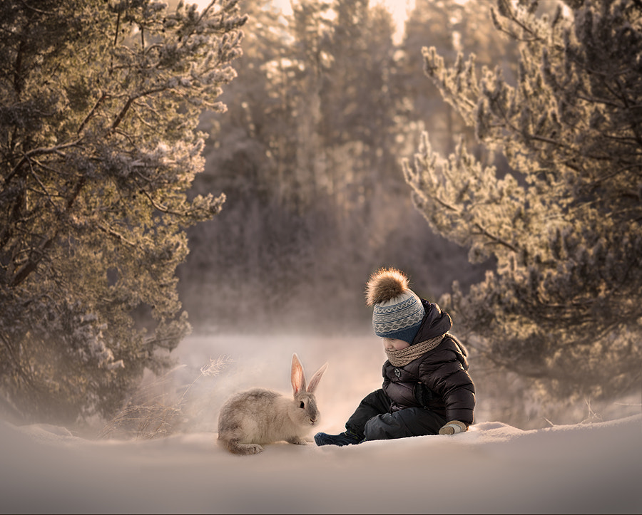 winter forest.. by Elena Shumilova on 500px.com