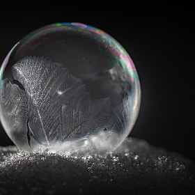 frozen bubble n°1