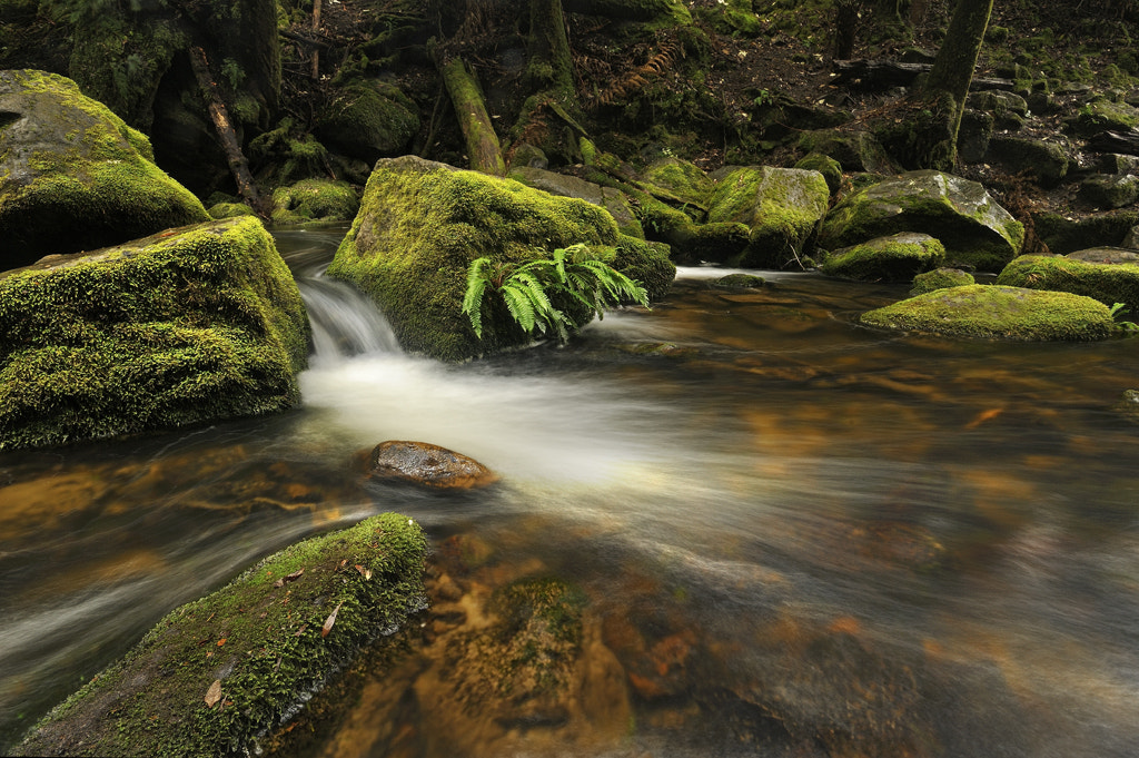 Photograph Horseshoe Stream by Andrew Fuller on 500px