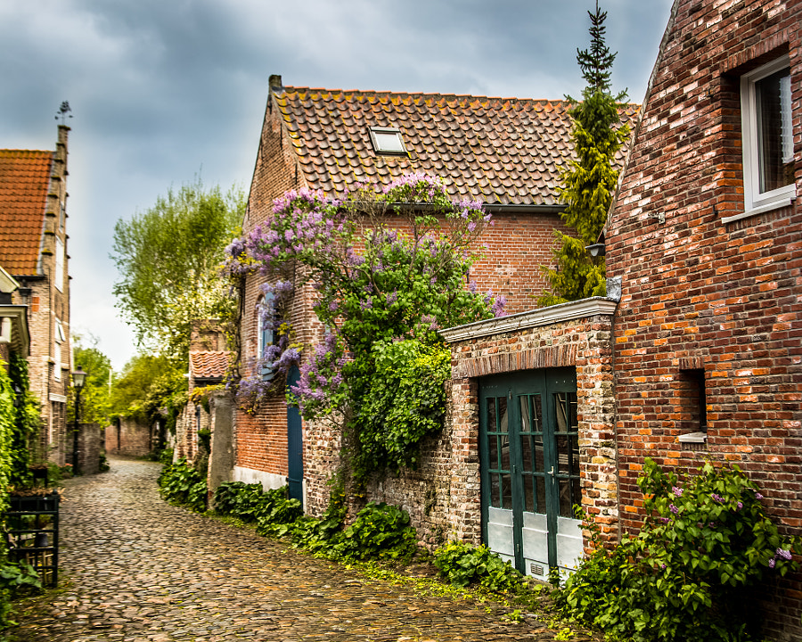 Street in Veere by Don Wolfe on 500px.com