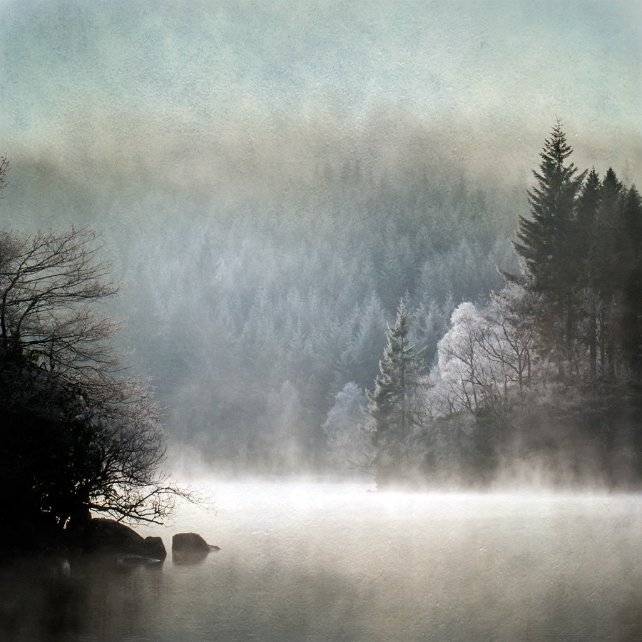 Photograph Loch Ard, Trossachs... by David Mould on 500px