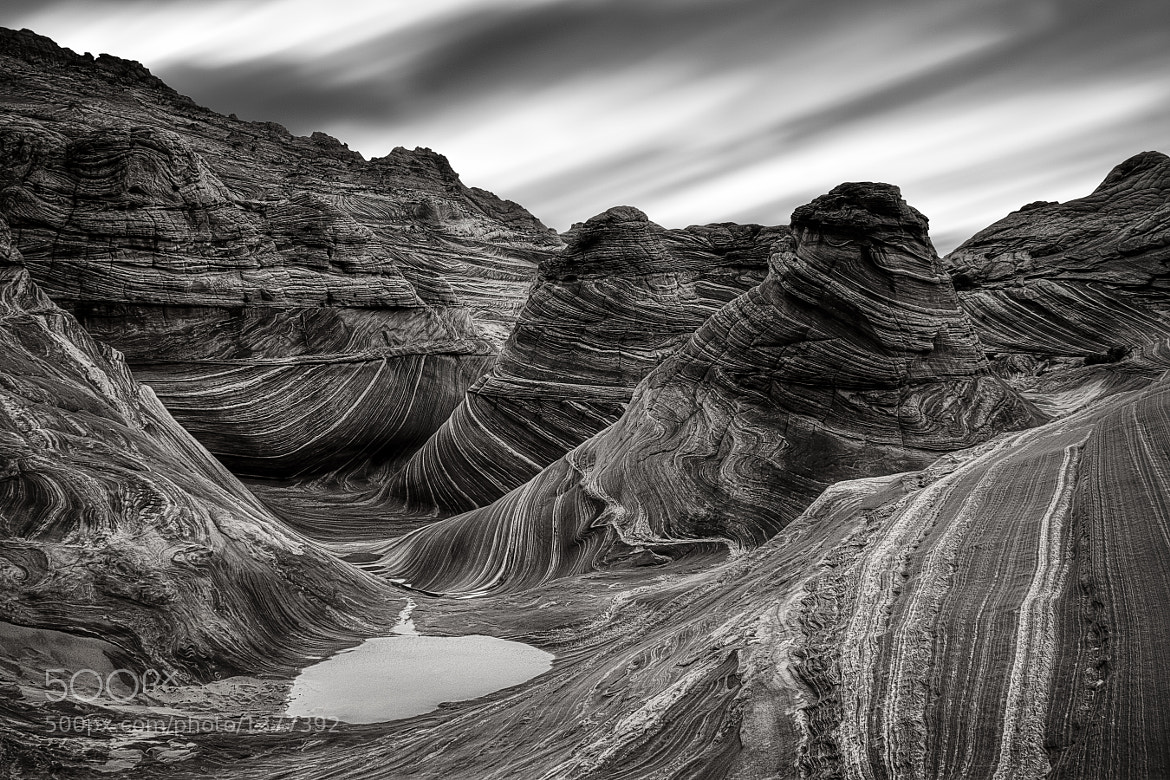 Photograph Patience by Danilo Faria on 500px